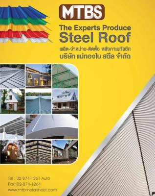 b2ap3_thumbnail_MTB-Expert-Steel-roof-.jpg